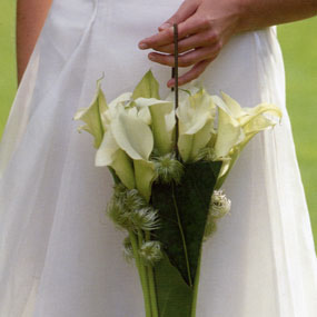 Wedding Flower Bouquets on Welcome To Dutch Flowers  Innovative Solutions  Spectacular Weddings